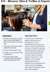 Travelzoo Eco-Chic Salon Irvine $19 Hair, Wine & Truffles