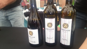 Cholame Vineyard Wines