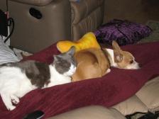 Brother & Sister Sleeping