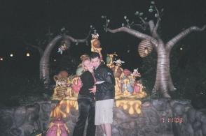 Disneyland annual passes, pre