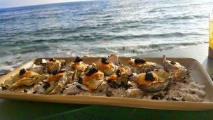 driftwood kitchen, laguna beach, new restaurants in orange county