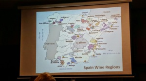 spain wines, portugal wines, total wine and more class