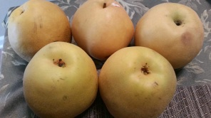 Melissa's Produce gift baskets, organic produce, exotic fruits
