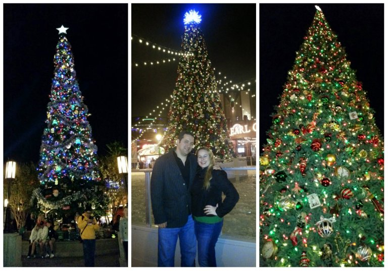 Trees of Disney - Calfornia Adventure, Downtown Disney, and Disneyland