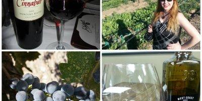 top 20 wines under $20