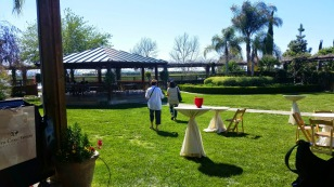 World of Wine, temecula, wine events, wine tasting