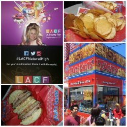 Tasti Chips, LA County Fair, Giveaway