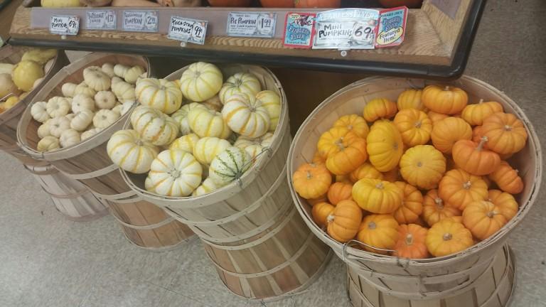 Trader Joe's, pumpkin, holiday shopping