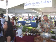 california wine festival, dana point, wine, orange county