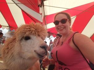 oc fair, fried food, petting zoo, county fair