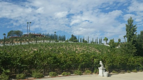 Temecula Valley, Barrel Tasting, Wine tasting